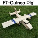 ft-guinea-pig
